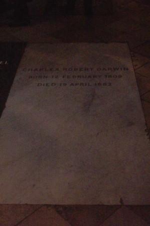 Westminster Abbey 32 (tombe van Charles Darwin)