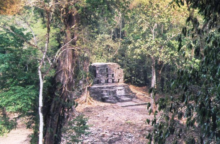Yaxchilan 08