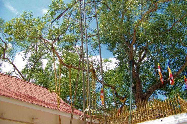 Anuradhapura (10)