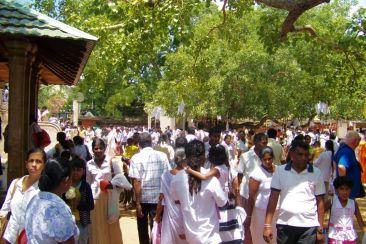 Anuradhapura (11)