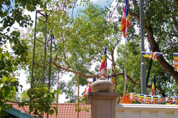 Anuradhapura (3)