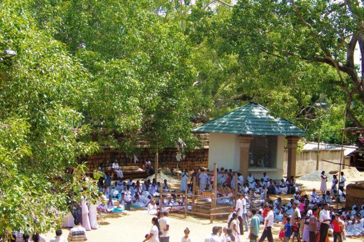 Anuradhapura (4)