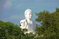 Anuradhapura (50)