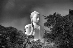 Anuradhapura (51)