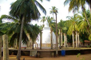 Anuradhapura (60)