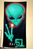 Area 51 4