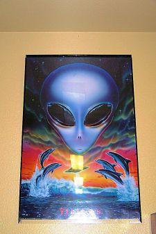Area 51 5