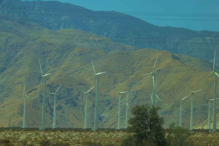 Arizona desert (15)