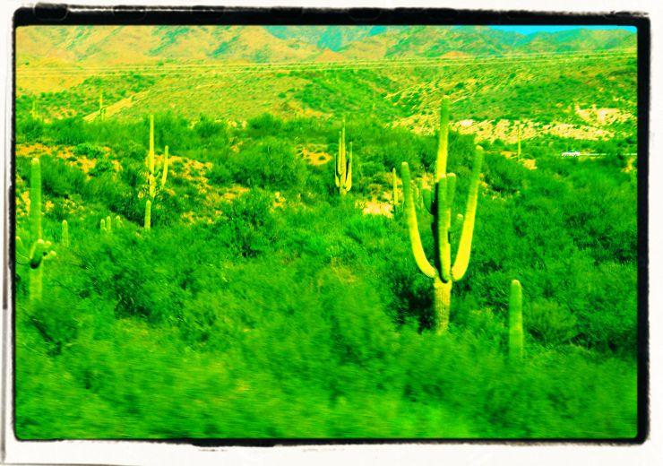Arizona desert (2)