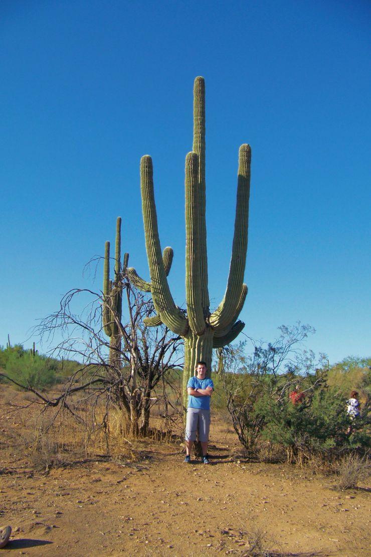 Arizona desert (6)