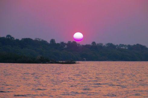 Boottocht op Zambezi (20)