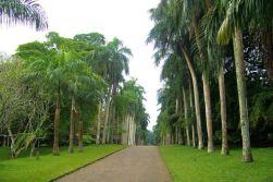 Botanische tuin (16)