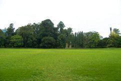 Botanische tuin (20)