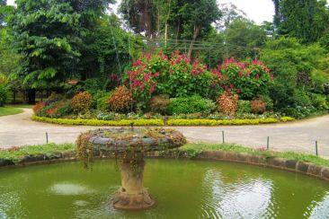 Botanische tuin (25)