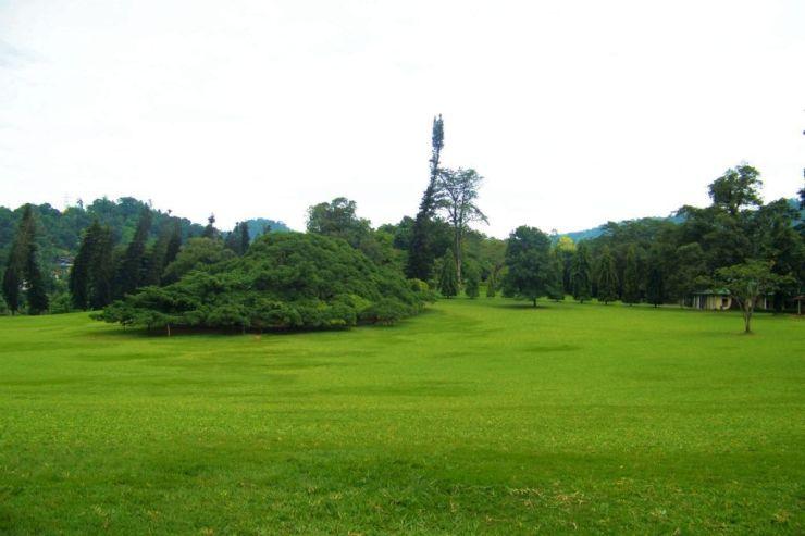 Botanische tuin (3)