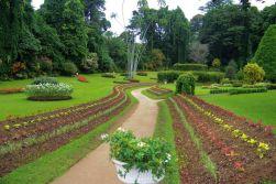 Botanische tuin (30)