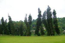 Botanische tuin (7)