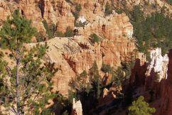 Bryce Canyon NP 05