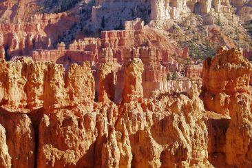 Bryce Canyon NP 32 - kopie