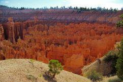 Bryce Canyon NP 35