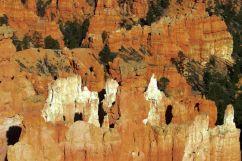 Bryce Canyon NP 40