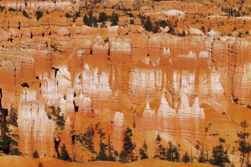 Bryce Canyon NP 44