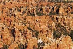 Bryce Canyon NP 45