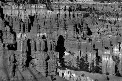 Bryce Canyon NP 51