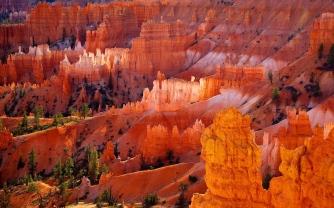Bryce Canyon NP 58