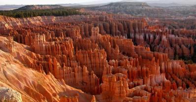 Bryce Canyon NP 59