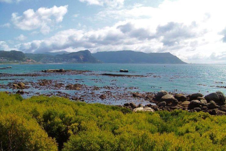 Cape of Good Hope NP 01