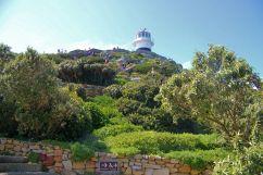 Cape of Good Hope NP 04