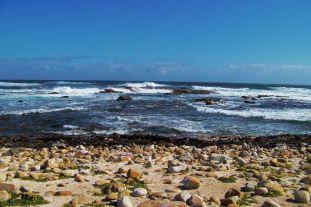 Cape of Good Hope NP 13
