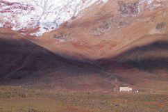 Chimborazo (15)