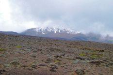 Chimborazo (3)