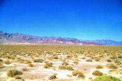 Death Valley NP 03