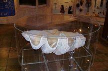 Diazmuseum 08