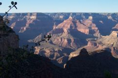 Grand Canyon NP 16