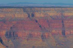 Grand Canyon NP 43