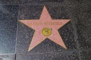 Hollywood Boulevard 12