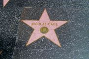 Hollywood Boulevard 14