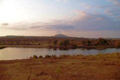 Kruger NP 06