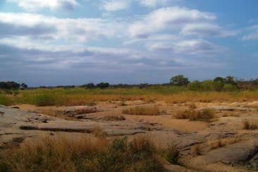 Kruger NP 38