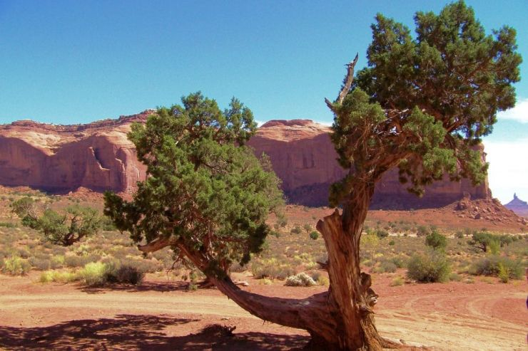 Monument Valley NR (49)