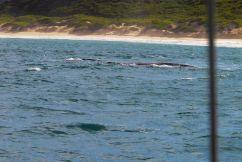 Mossel Bay (10)