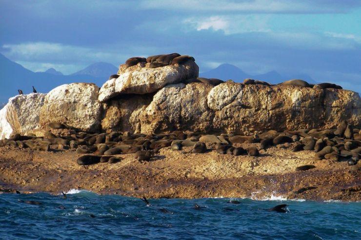 Mossel Bay (18)