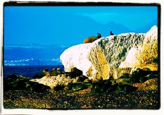 Mossel Bay (19)