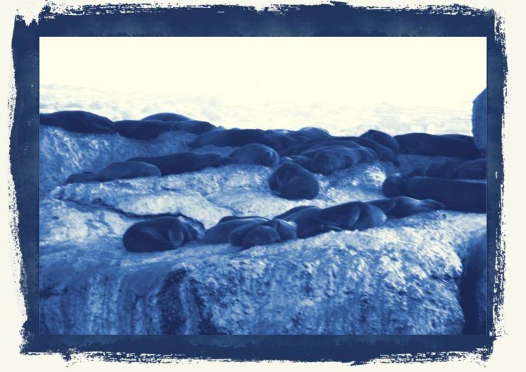 Mossel Bay (20)