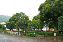Parque Central (13)