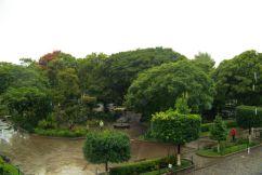 Parque Central (4)